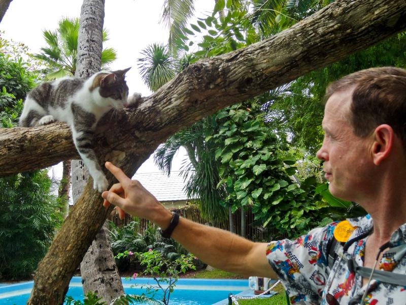 Cat friend & Mike  Hemingway Home, Key West