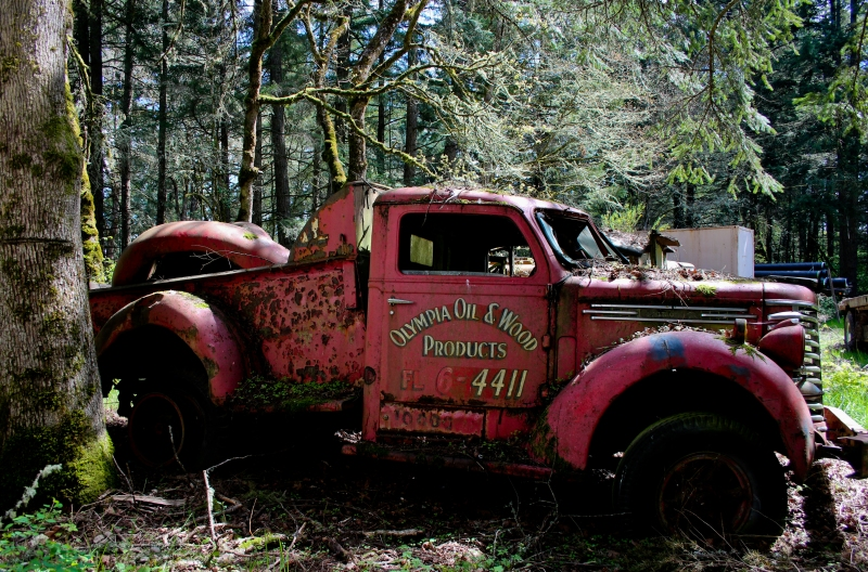 I love old trucks, I cannot lie. I love the rust and the moss and the way the paint fades in shades.