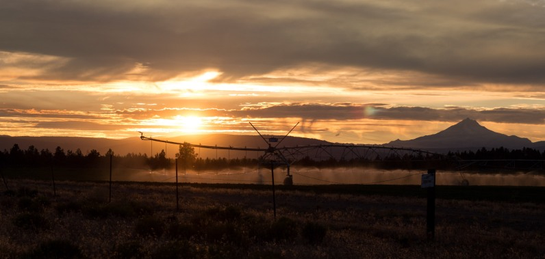 Central Oregon sunsets are the best! (of course I'm biased)