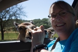 Wildlife Safari, Winston Oregon